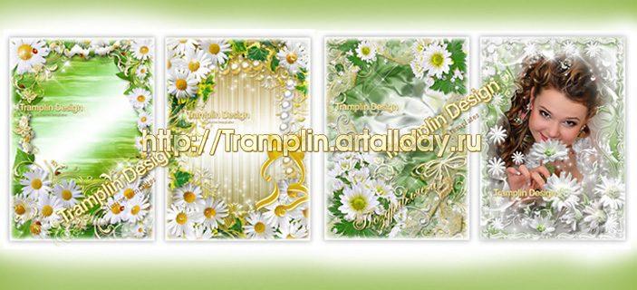 Набор цветочных рамок - Ромашки и Хризантемы